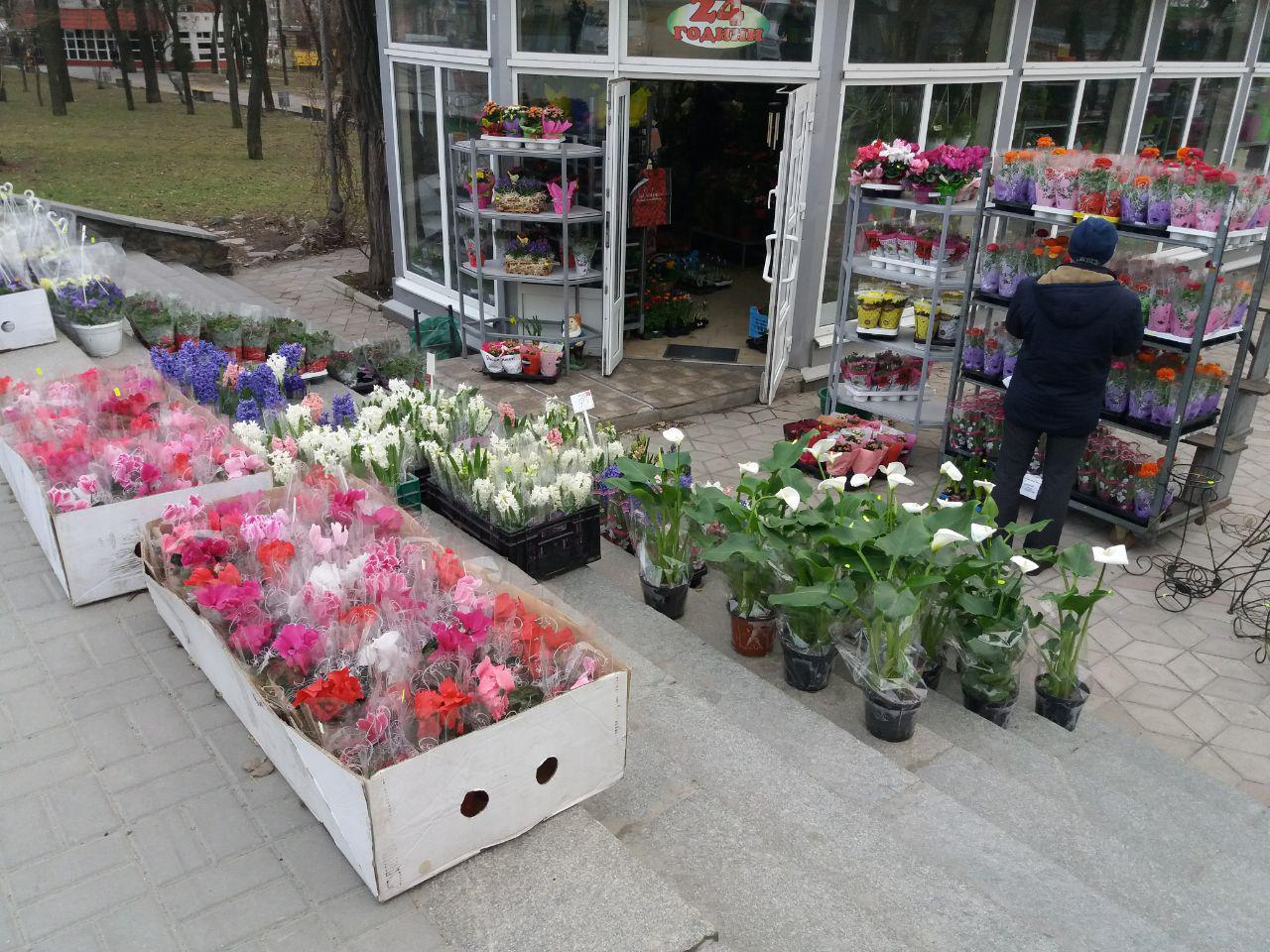 Цветы запорожье цены, красивые букеты день