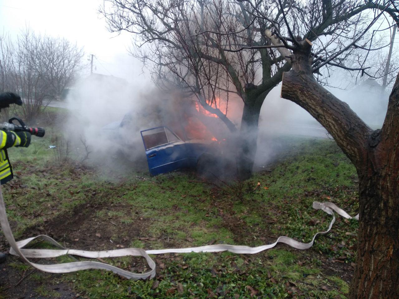 На Запоріжжі від зіткнення з деревом загорівся легковик